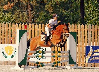 Balades à Cheval et Équitation