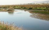 PR2 - Trillo de la Naturaleza: entre el Cávado y el Atlântico