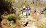 PR3 - Cangostas Trail