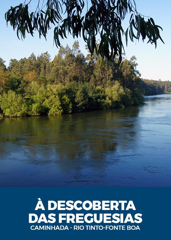 a-descoberta-das-freguesias-rio-tinto-fonte-boa
