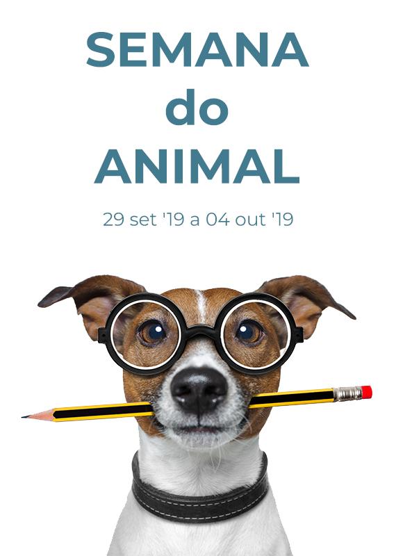 animal-week