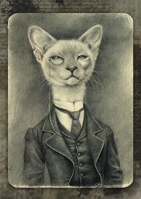 teatro-o-gato