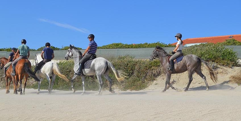 Nature Equestrian Trails