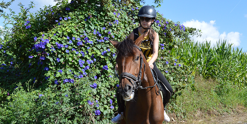Nature Equestrian Trails