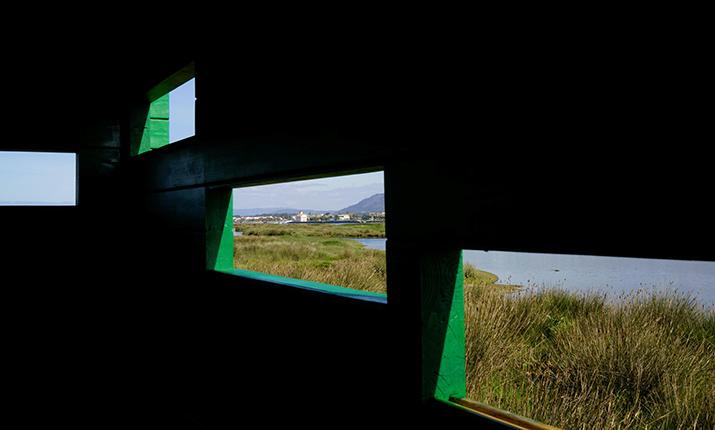 Observatory of Cávado Estuary - Fão