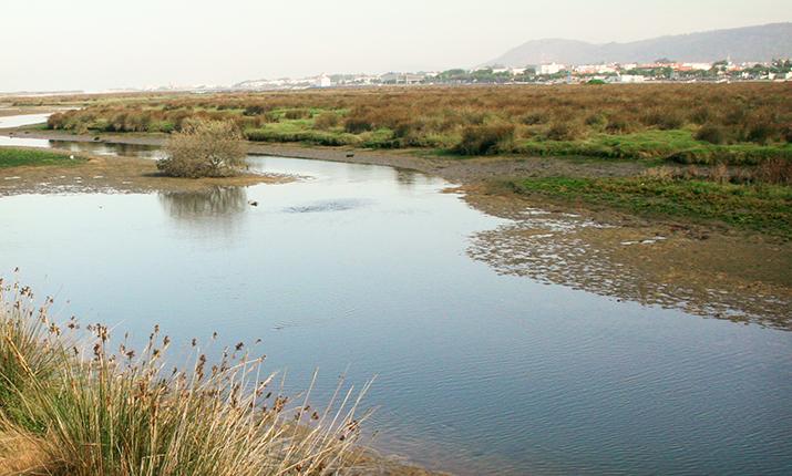 PR2 - Trilho da Natureza: entre o Cávado e o Atlântico