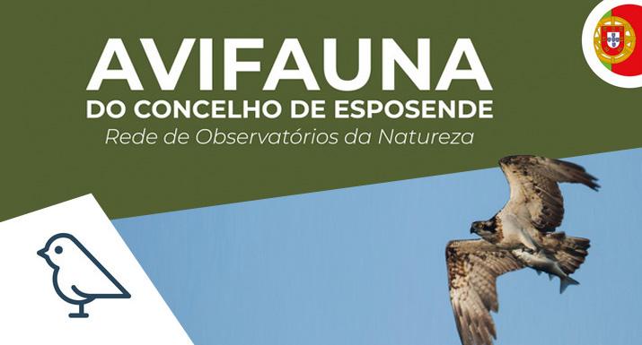 Município de Esposende lança guia sobre a  avifauna do concelho